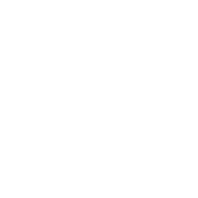 Medaille Argent 2018 - Histoire
